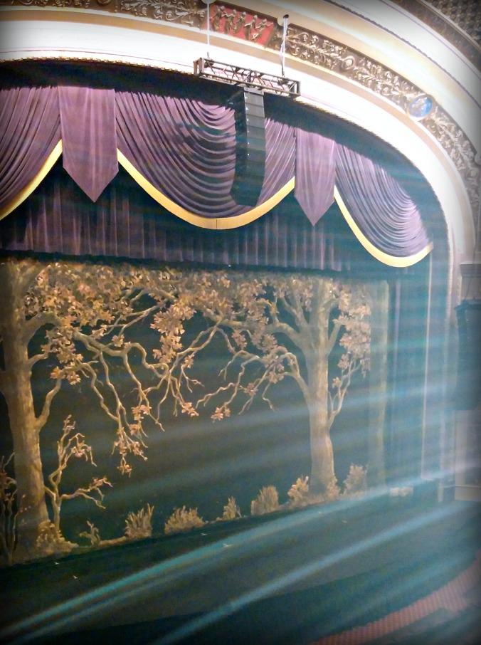 Vet Theatre 1