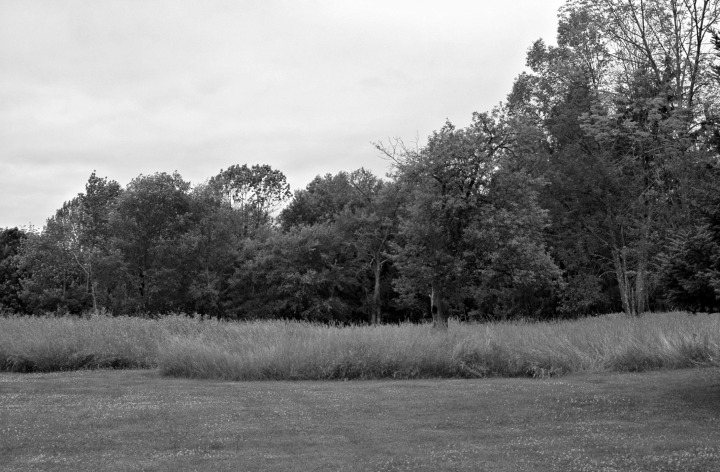 Robert Frost House Meadow and Wood