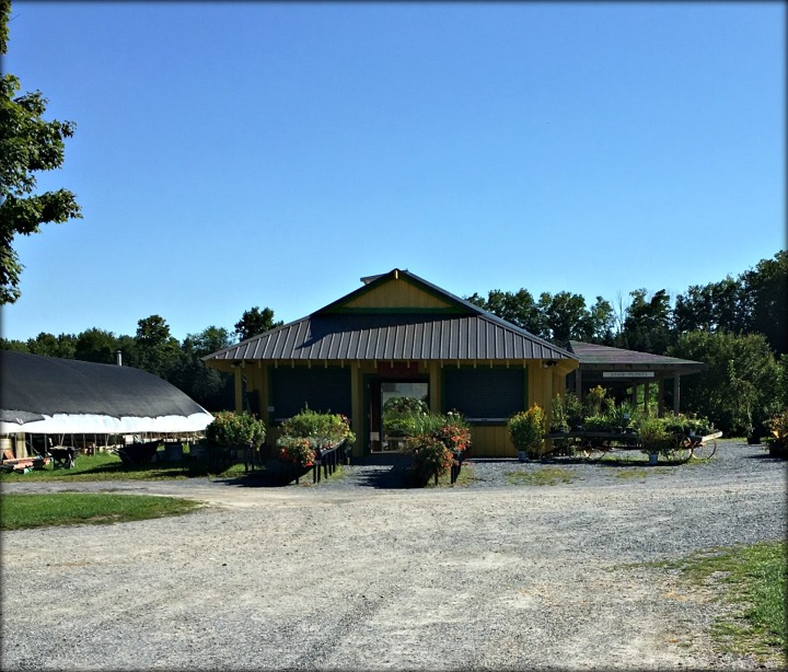 Clear Brook Farm 1 A
