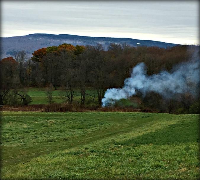 brush_burning_mile_around_woods
