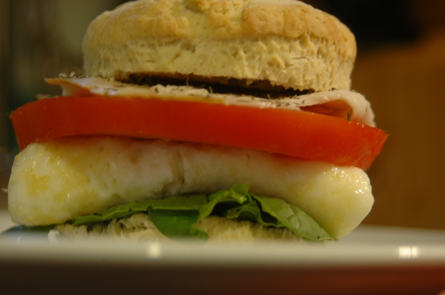 Plated biscuit sandwich in profile, in color